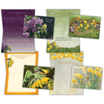 KJV Boxed Cards - Thinking of You II (Flowers & Finches) by Shared Blessings