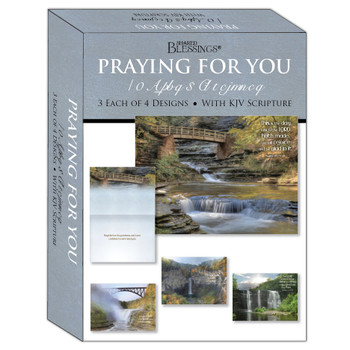 KJV Boxed Cards - Praying for You, Waterfalls by Shared Blessings