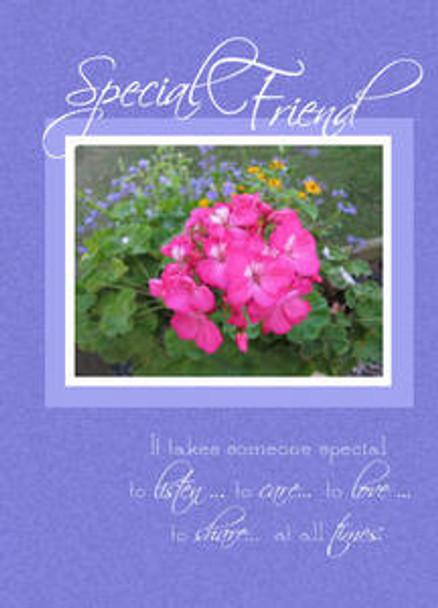 """Special Friend - 5"""" x 7"""" KJV Greeting Card"""