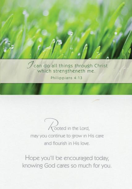 KJV Boxed Cards - Encouragement, Nature's Splendor