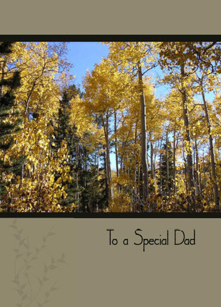 """To a Special Dad - 5"""" x 7"""" KJV Greeting Card"""