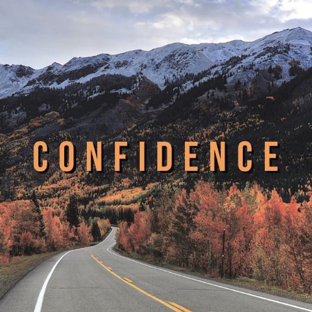 Confidence CD by Erik Hertzel