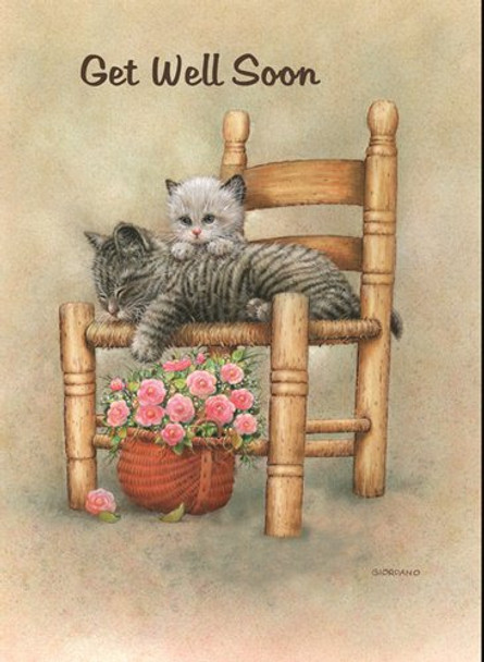 KJV Boxed Cards - Children's Get Well, Fuzzy Friends by Heartwarming Thoughts