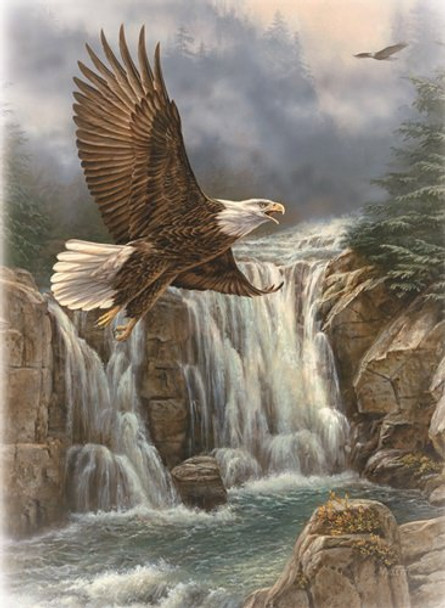 KJV Boxed Cards - Sympathy, On Eagle's Wings by Heartwarming Thoughts