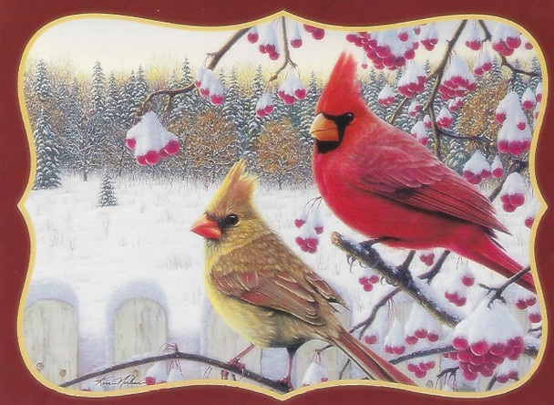 KJV Boxed Cards - Christmas, White Crimson Morning by Heartwarming Thoughts