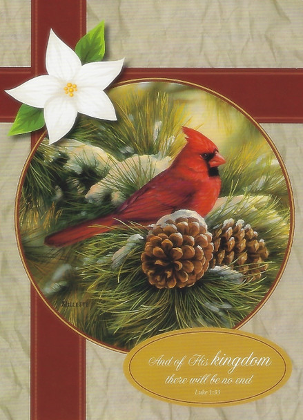 KJV Boxed Cards - Christmas, Winter Birds by Heartwarming Thoughts