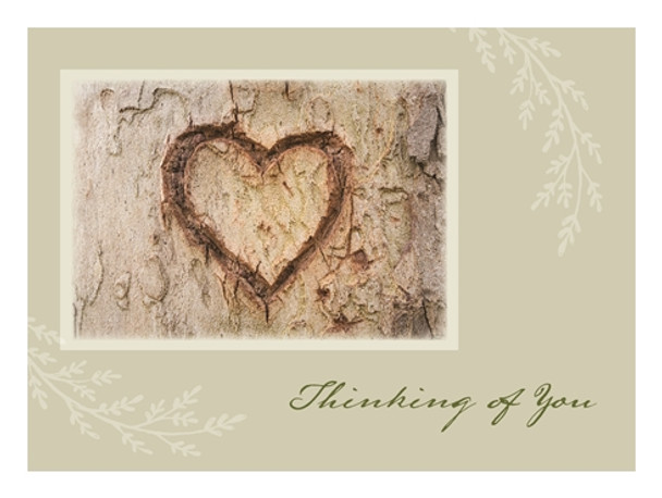 KJV Boxed Cards - Secret Pal, Year of Cheer by Heartwarming Thoughts