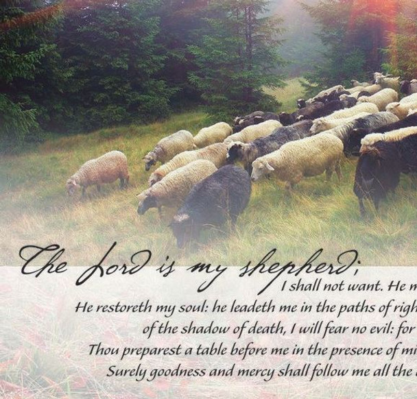 Psalm 23 - Wall Plaque by Heartwood Hollow