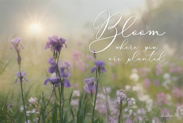 Bloom Where You Are Planted - Wall Plaque by Heartwood Hollow
