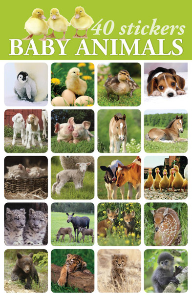 Baby Animals Stickers - 2 sheets