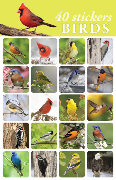Birds Stickers - 2 sheets