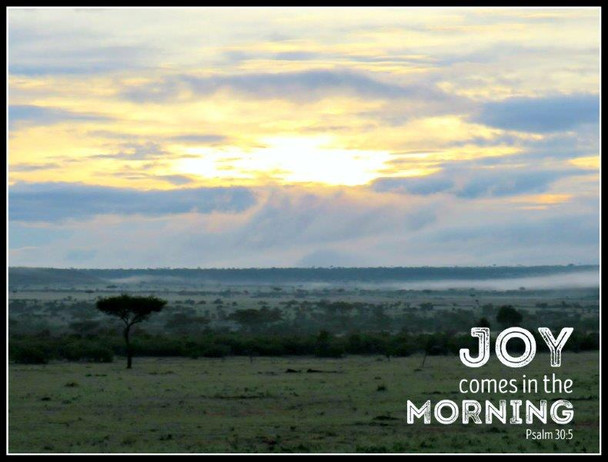 Joy Comes in the Morning - 5 Blank Notecards