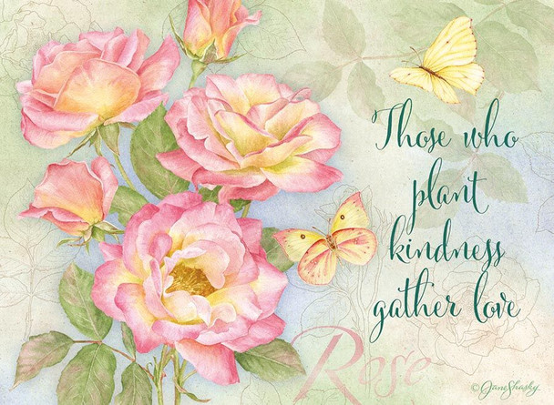 KJV Boxed Cards - Birthday, Butterfly Blooms by Heartwarming Thought