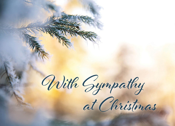 KJV Boxed Cards - Christmas Sympathy, Light of the World by Heartwarming Thought