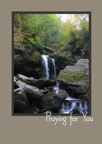 "Praying for You - 5"" x 7"" KJV Greeting Card"