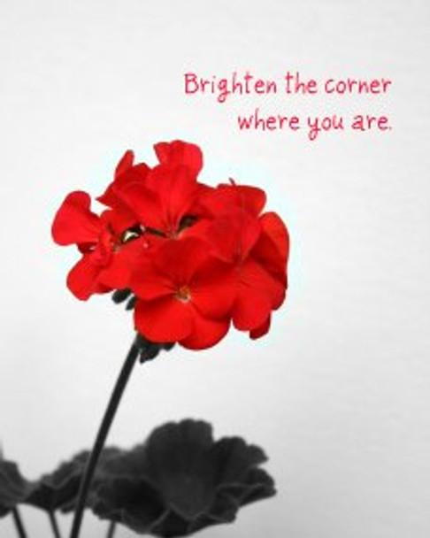 Brighten the Corner - 5 Blank Notecards