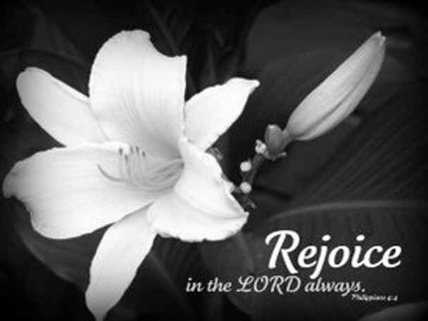 Rejoice in the Lord - 5 Blank Notecards