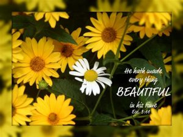 He Hath Made Everything Beautiful - 5 Blank Notecards