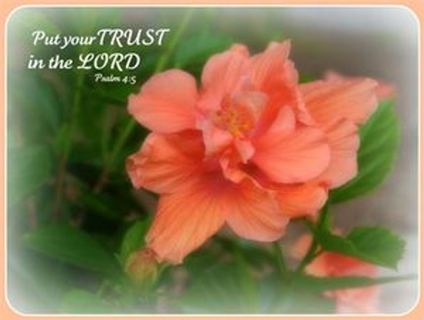 Put Your Trust in the Lord - 5 Blank Notecards