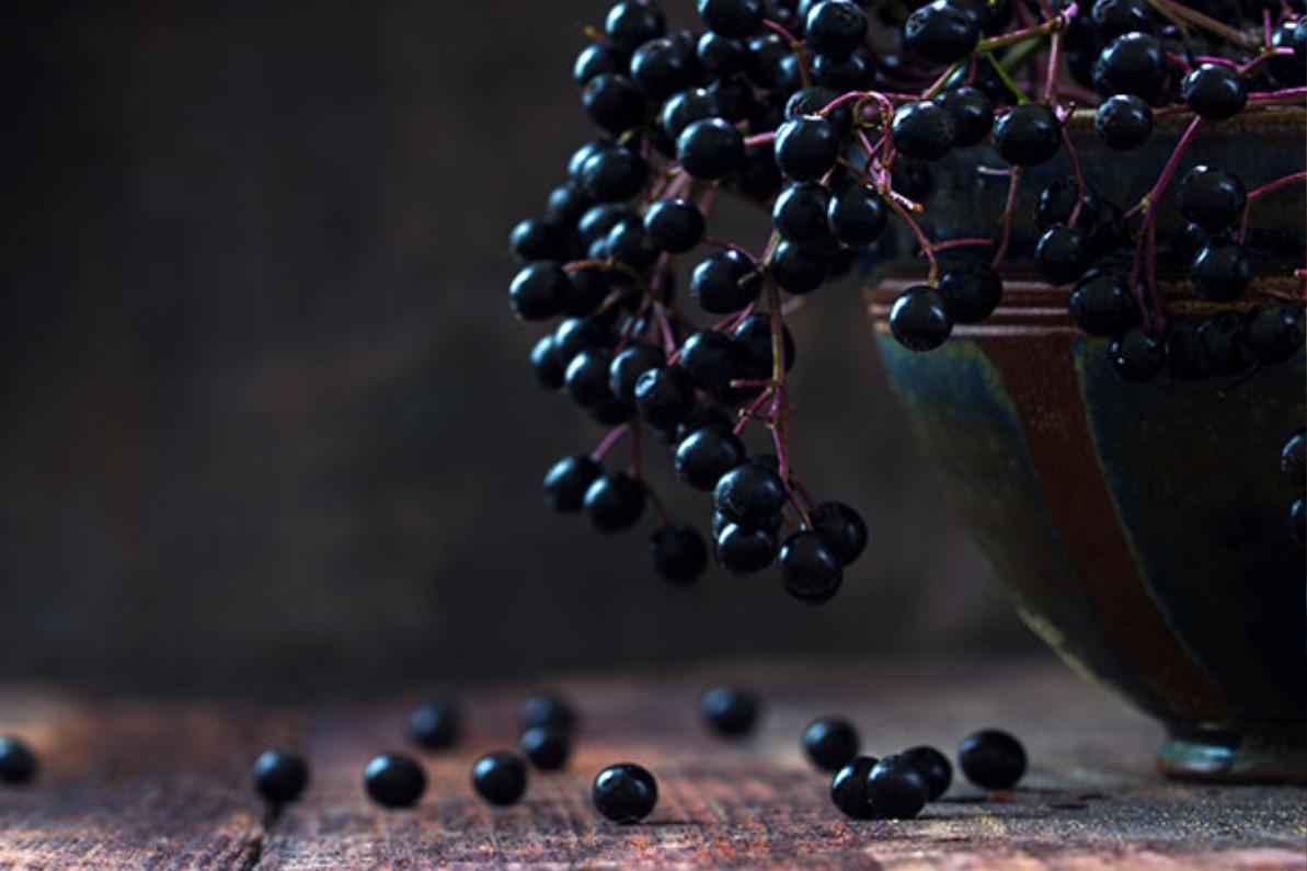Is Elderberry Dangerous for Covid 19?