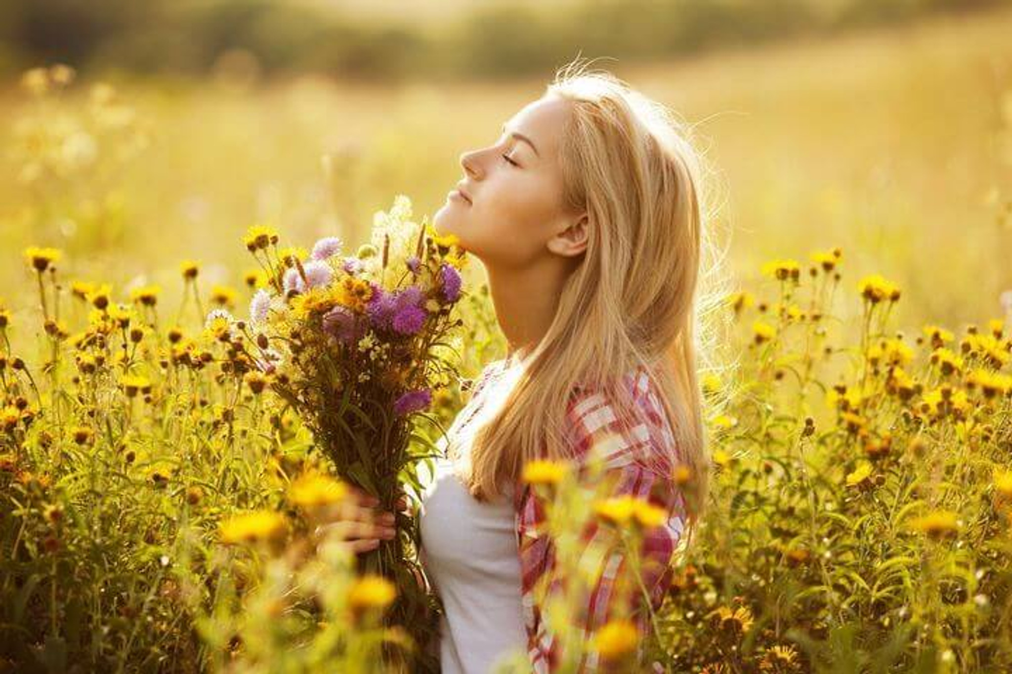 Fight Hay Fever and Allergies Naturally