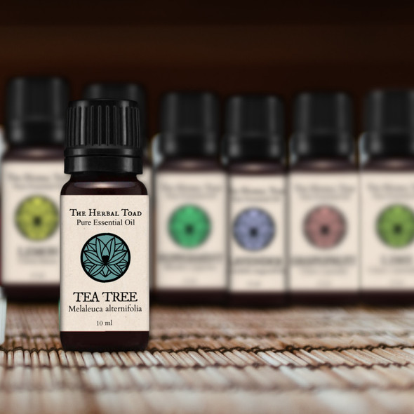 Single Essential Oils 22 Set
