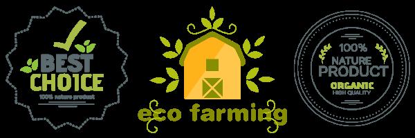 organic-eco-2.png