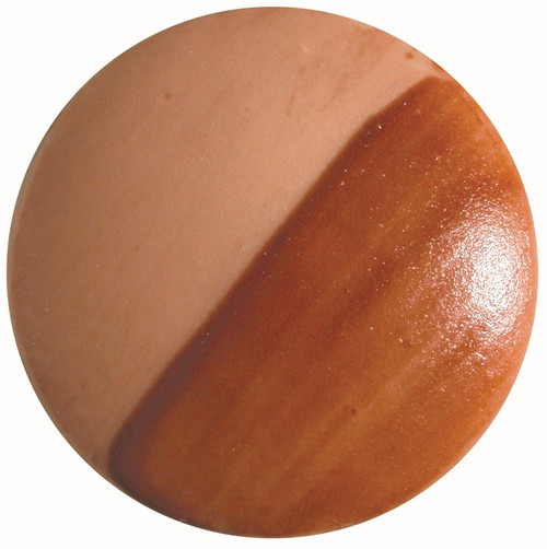 CHINA PAINT APRICOT SHIMMER - discontinued color