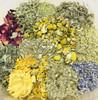 Yoni Steam - Supreme Blend (Organic)