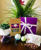 Spa Day Package with Crystal Cluster