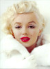 Marilyn Monroe Autopsy, PDF Download