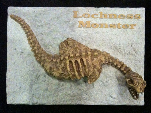 Lochness Monster, Fossil Sculpture, Very Detailed, Must Have Collectable