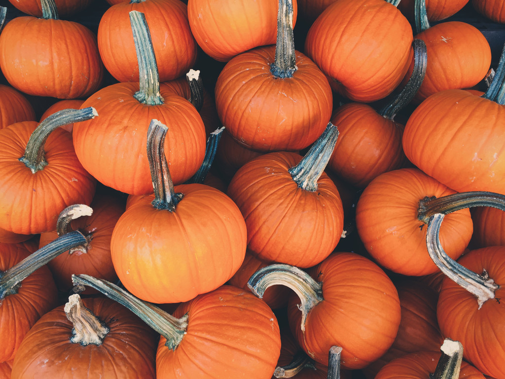Our Favorite Healthy Halloween Recipes