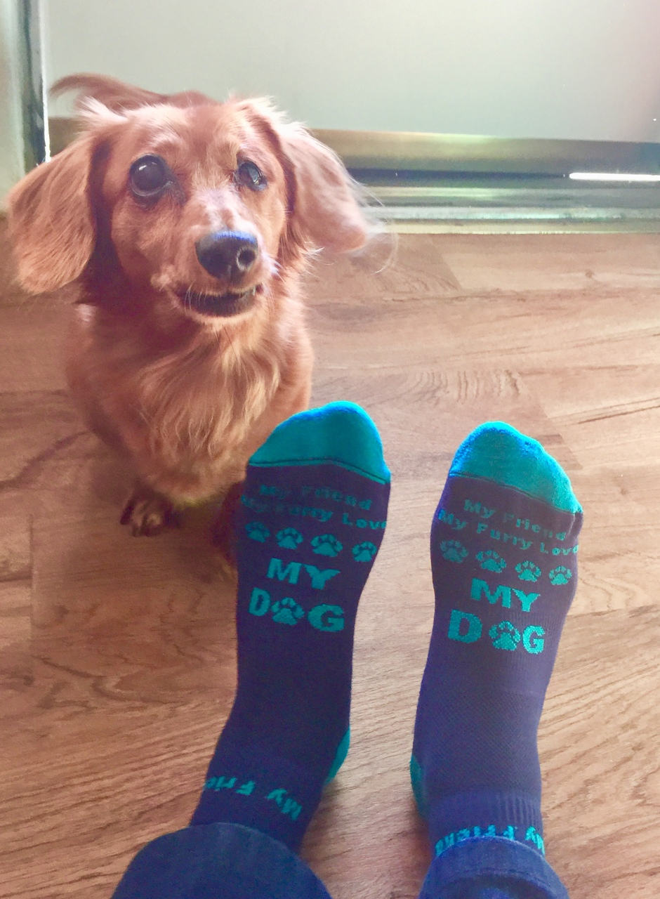 My Friend My Furry Love My Dog Socks For Women And Men The Faithy Zone
