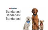 Bandanas, Bandanas, and MORE Bandanas!