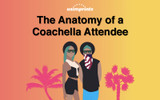 Coachella Attendees and Their Anatomy