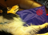 Zentek mats as emergency blankets