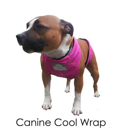 Canine Quick Wrap