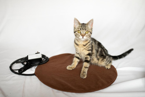 The Kitty Tube SAFE Low Voltage Round Outdoor Heating Pad or Free Shipping
