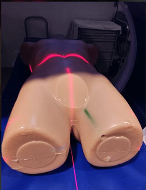 Adult Human Torso – Advanced R&D
