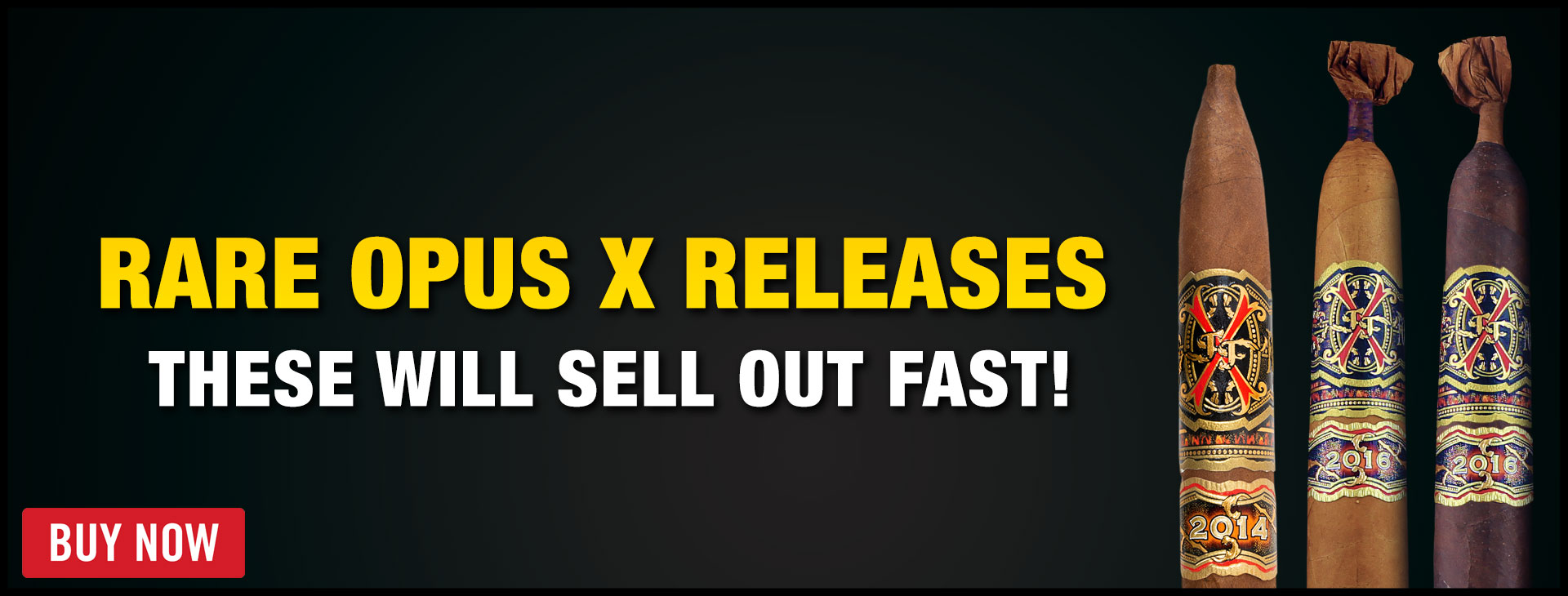opus-x-releases-2021-banner.jpg