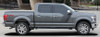 profile 2017 F 150 Hood & Side Graphics QUAKE 2009-2020