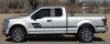 profile of 2019 Ford F150 Stripe Package ELIMINATOR 2015-2020