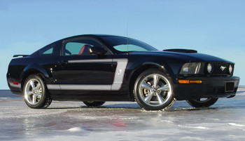 profile of Ford Mustang Side Custom Stripes 3M FASTBACK 1 2005-2009