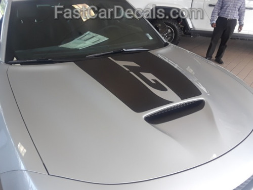 side angle of silver Dodge 2019 Charger Hood Stripes CHARGER 15 HOOD 2015-2021