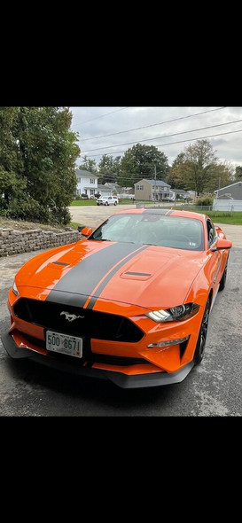 front of orange EURO XL RALLY   2021-2018 Ford Mustang Center Vinyl Graphic Stripe Premium Products!