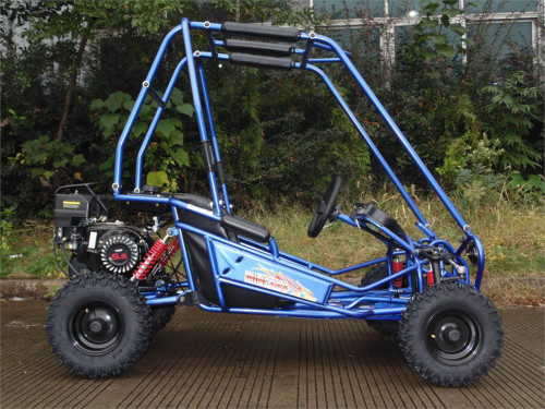 Trailmaster Xrs Mini PLUS  (Free Shipping) Some assembly