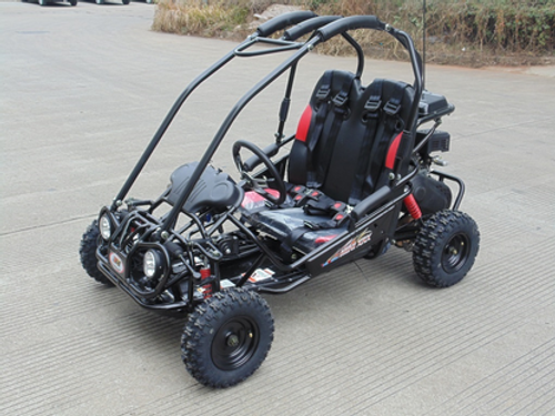 TRAILMASTER XRX MINI WITH REVERSE (FREE SHIPPING SOME ASSEMBLY)