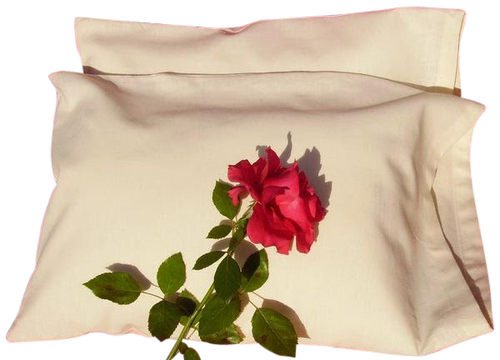 Healthy and Eco-Friendly pillow