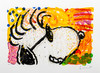 Tom Everhart; Pop Star Zoom